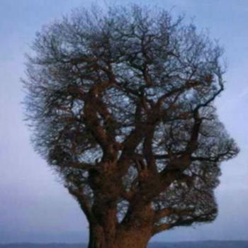 Обновление мышления